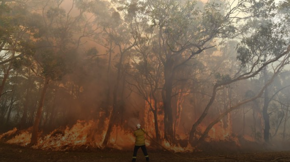 Bushfires in Australia – the story of fire in the Australian landscape