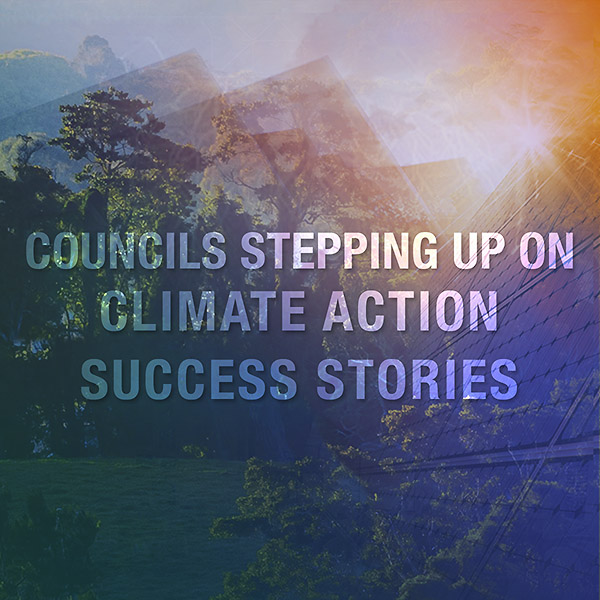 Councils and climate action: what are Boroondara's neighbours doing?