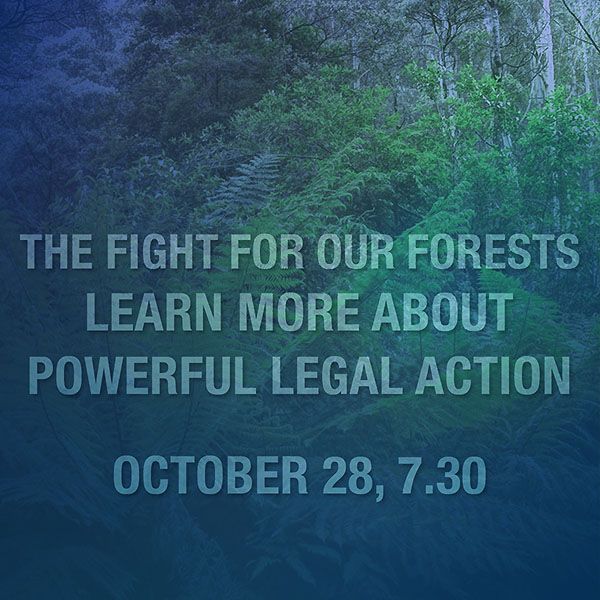 The Fight for our Forests - Lighter Footprints October meeting