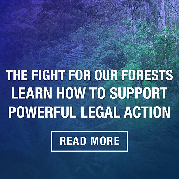 The right For Our Forests event October 28