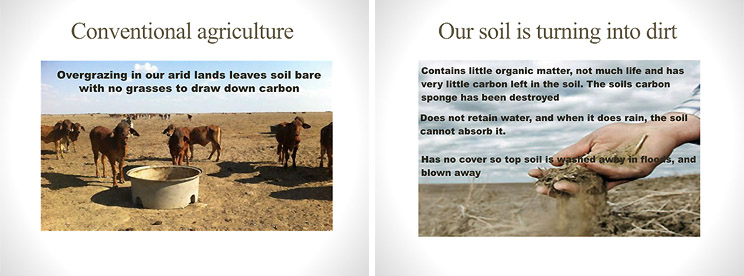 Lack of carbon in the soil, and compacted soils reduce water uptake