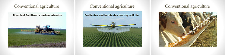Pesticides and monocultures ruin soil and agricultural productivity