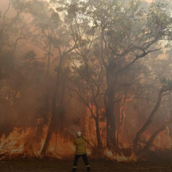 Bushfires in Australia – the story of fire in the Australian landscape